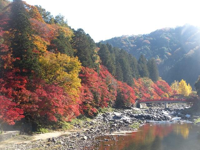 香嵐渓の紅葉㉚