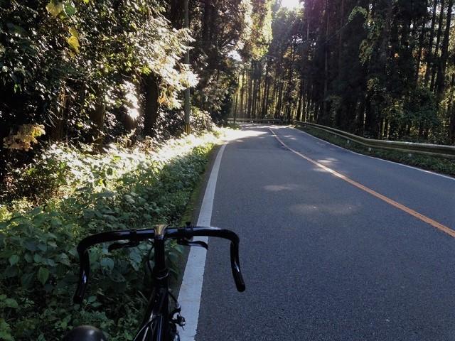 香嵐渓の紅葉㉛