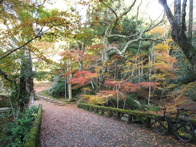 王滝渓谷の紅葉�