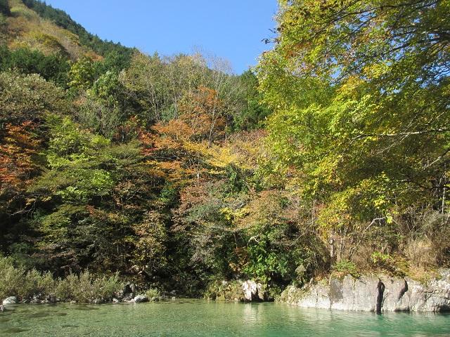 阿寺渓谷の紅葉�