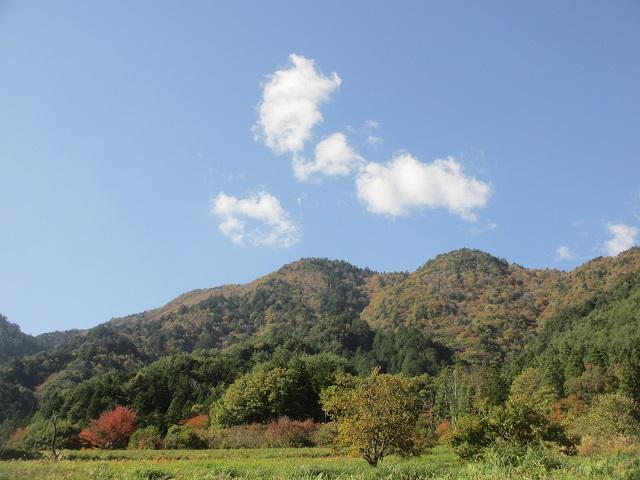 柿其渓谷の紅葉�