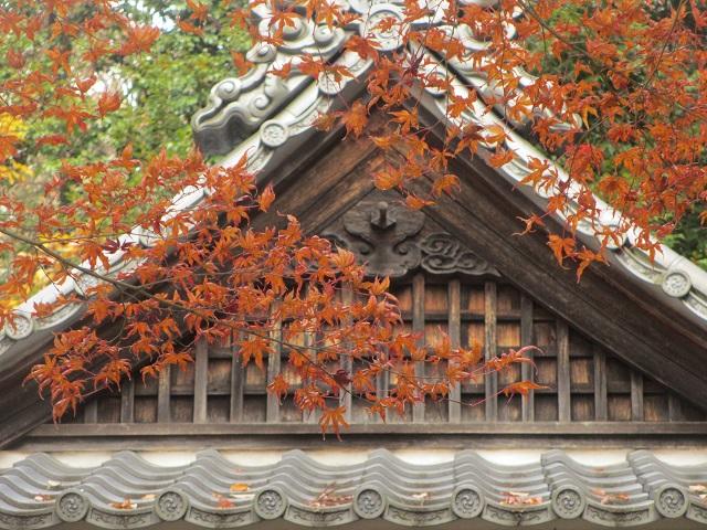犬山寂光院の紅葉�