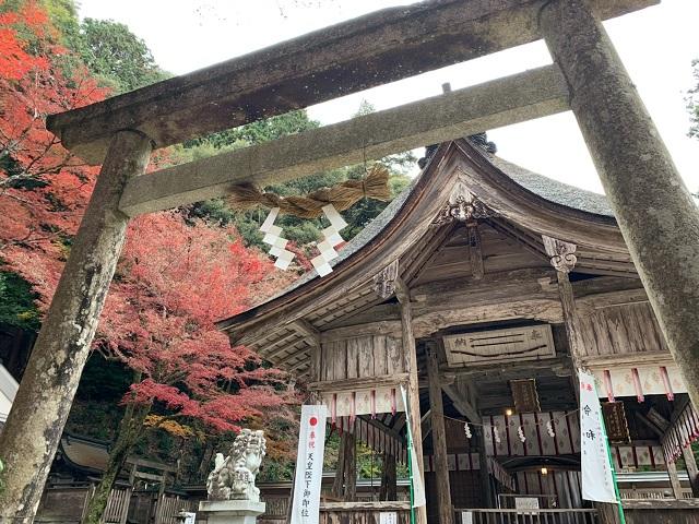 大矢田神社の紅葉�