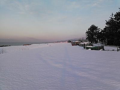 青海の雪原