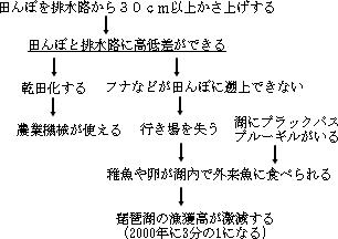 琵琶湖の問題構造