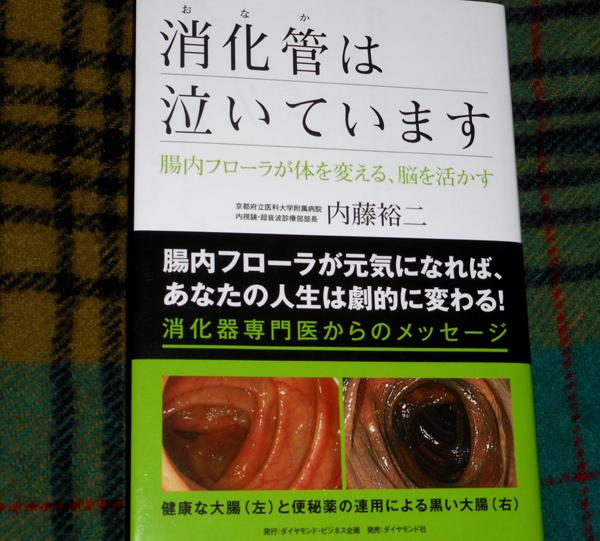 腸内フローラと便秘