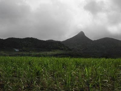 ヌスクマーペー(野底岳)