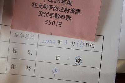 s-036 (3).jpg