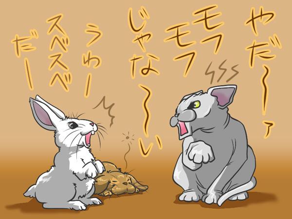 ルイとウサギ