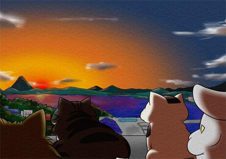 猫カフェの屋上から夕焼けを見るの図