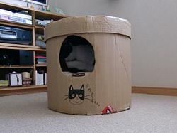 段ボールの猫の家