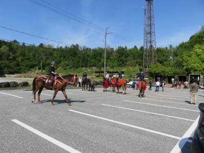 大駐車場で馬をならしている所