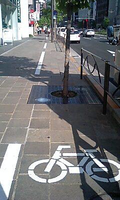 麹町の自転車道