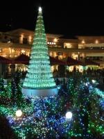 ラゾーナのクリスマスツリー