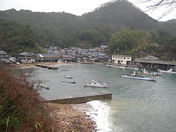 成生漁港   CAMEL