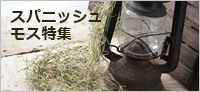 ba 2-crop 180 blog