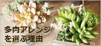 ba 3-crop 180 blog