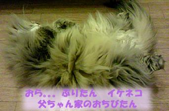CAA26NN7のコピー.jpg