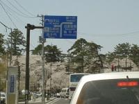 弘前公園周辺