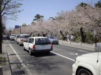 弘前公園外濠付近