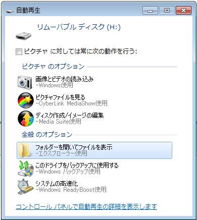 20110203f.jpg