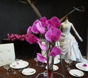 胡蝶蘭のゲストテーブル