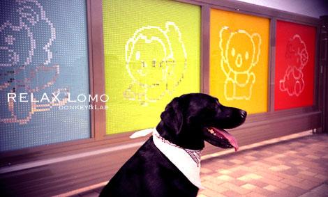 Lomo076.jpg