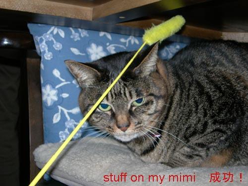 stuff on mimi18