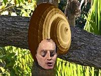 snail blair