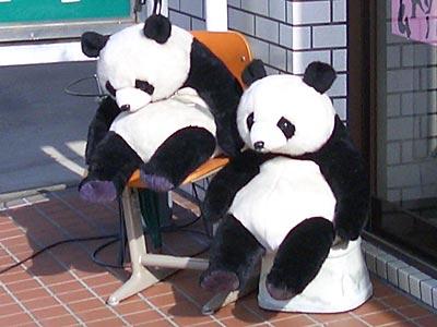 ササヘルスパンダ