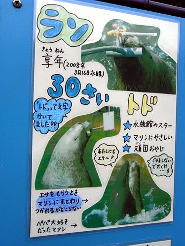 室蘭水族館05ラン