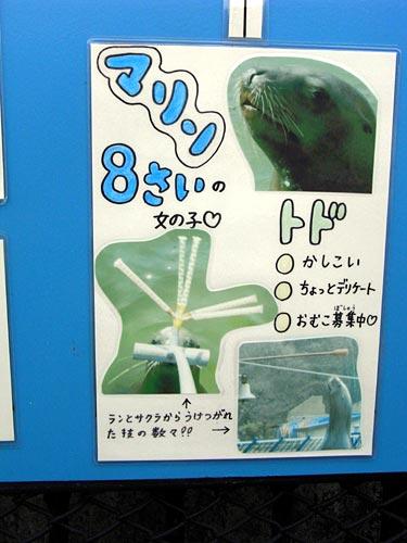 室蘭水族館07マリン