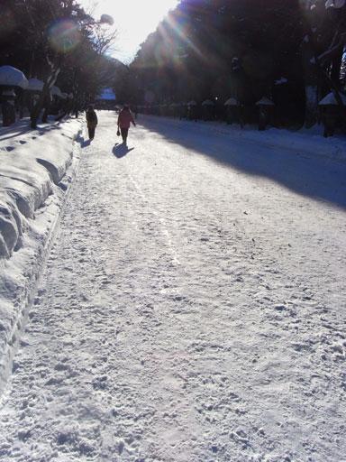 神宮の雪道