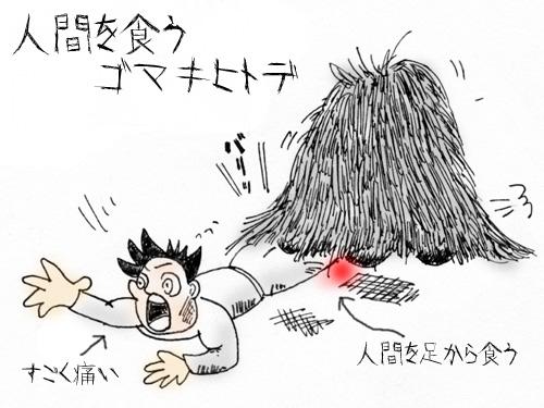 ゴマキヒトデ4