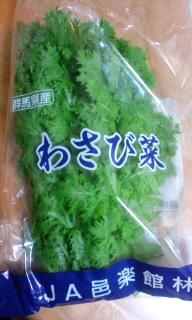 わさび菜1