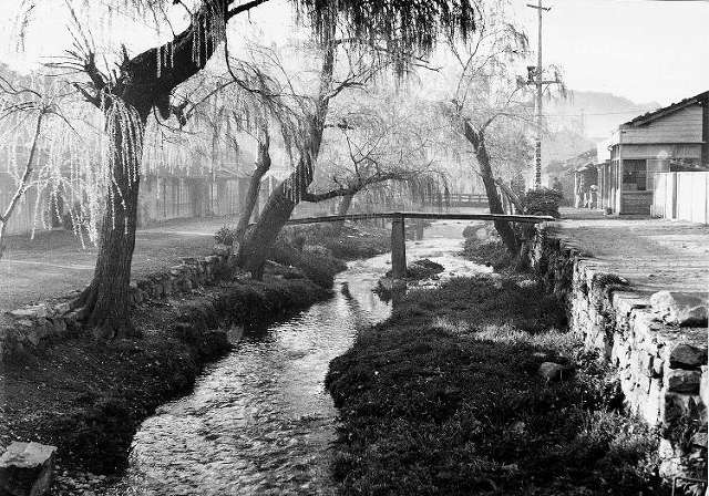 「厳原町の川端通り」(昭和30年代?)