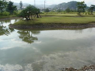 柳之御所の池