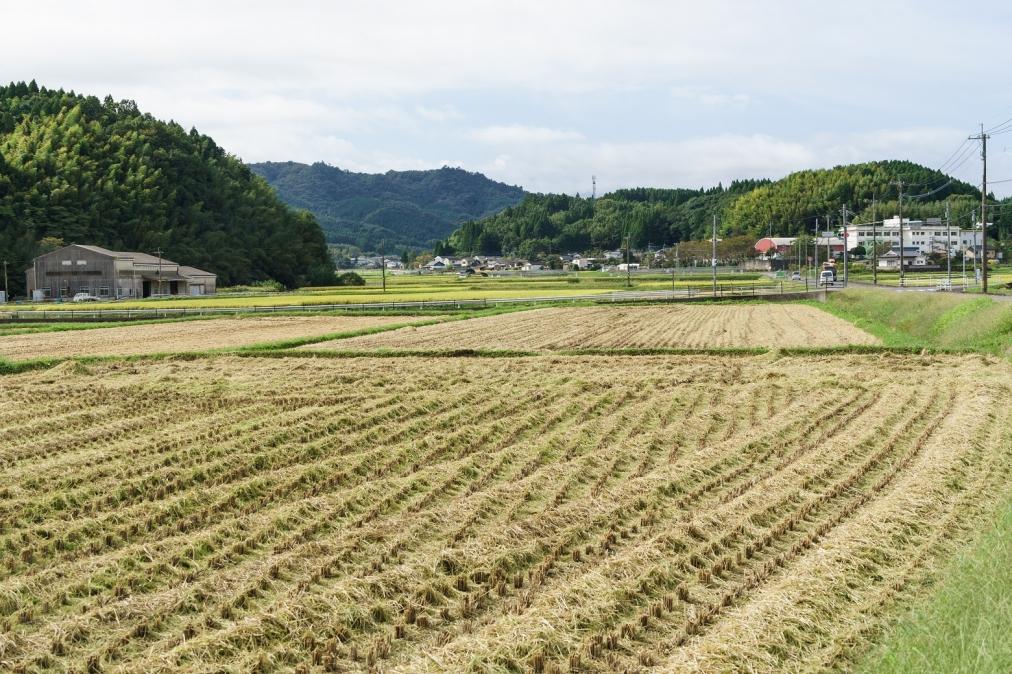 三重町玉田から新田方面を見る