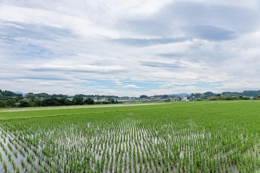 緒方町鮒川地区
