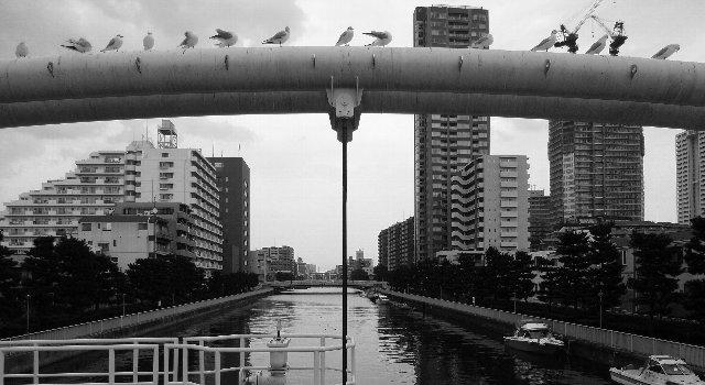 2010新春撮り初め