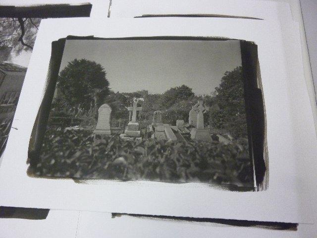 11×14 横浜外人墓地越しに富士山を臨む