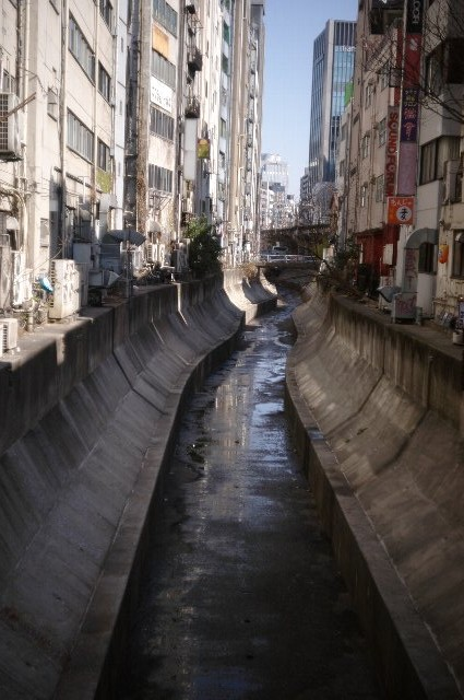 春の小川の渋谷川