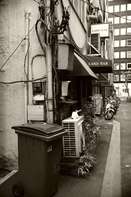 Leica銀座の真裏
