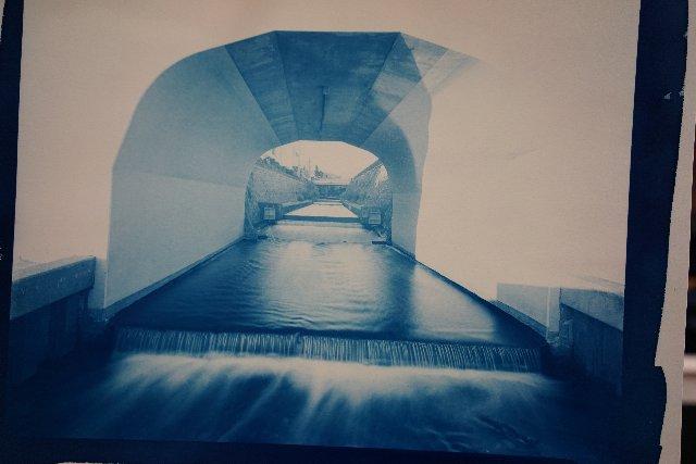 サイアノ cyanotype