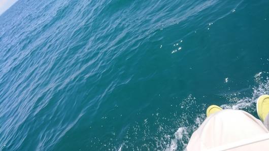 海は広いな.JPG