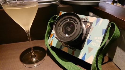 新型4X5カメラ 4.JPG