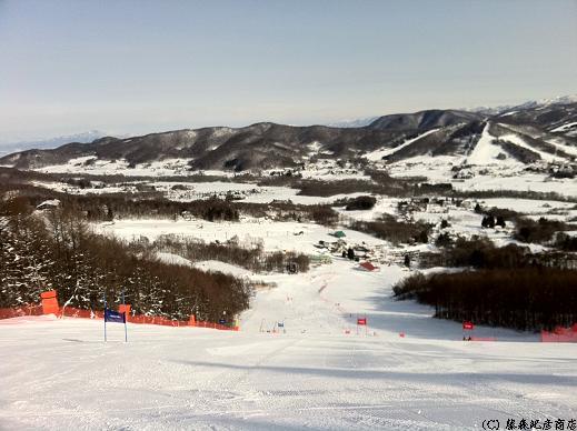 ※第35回世田谷スキー選手権大会 大回転