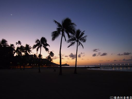 ※Waikiki Beach