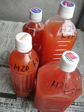 トマト ジュース 作り方