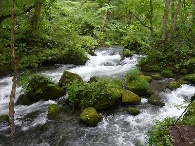 奥入瀬渓流阿修羅の流れ